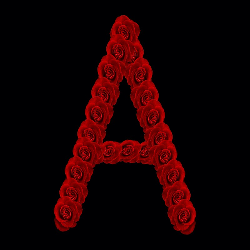 Z alphabet in rose