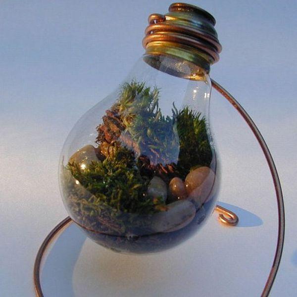 how to make light bulb planter