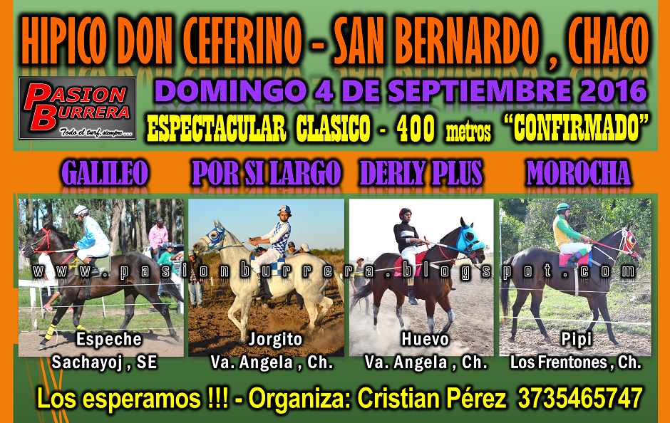 SAN BERNARDO - 4 - 400