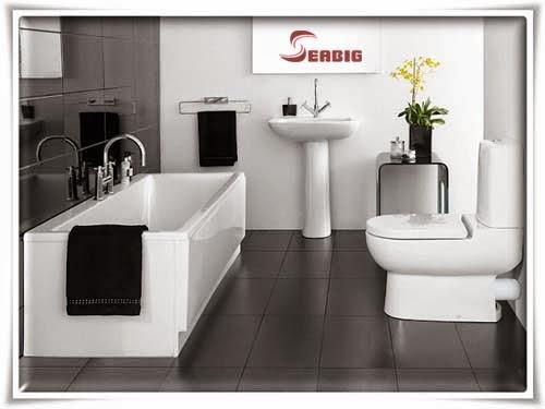 thiết bị vệ sinh caesar cao cấp cho phòng tắm