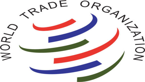 an introduction to the official world trade organisation wto Imagining a world of fair trade enterprises  ed mayo from co-operatives uk and erinch sahan from the world fair trade organization make a call for change.