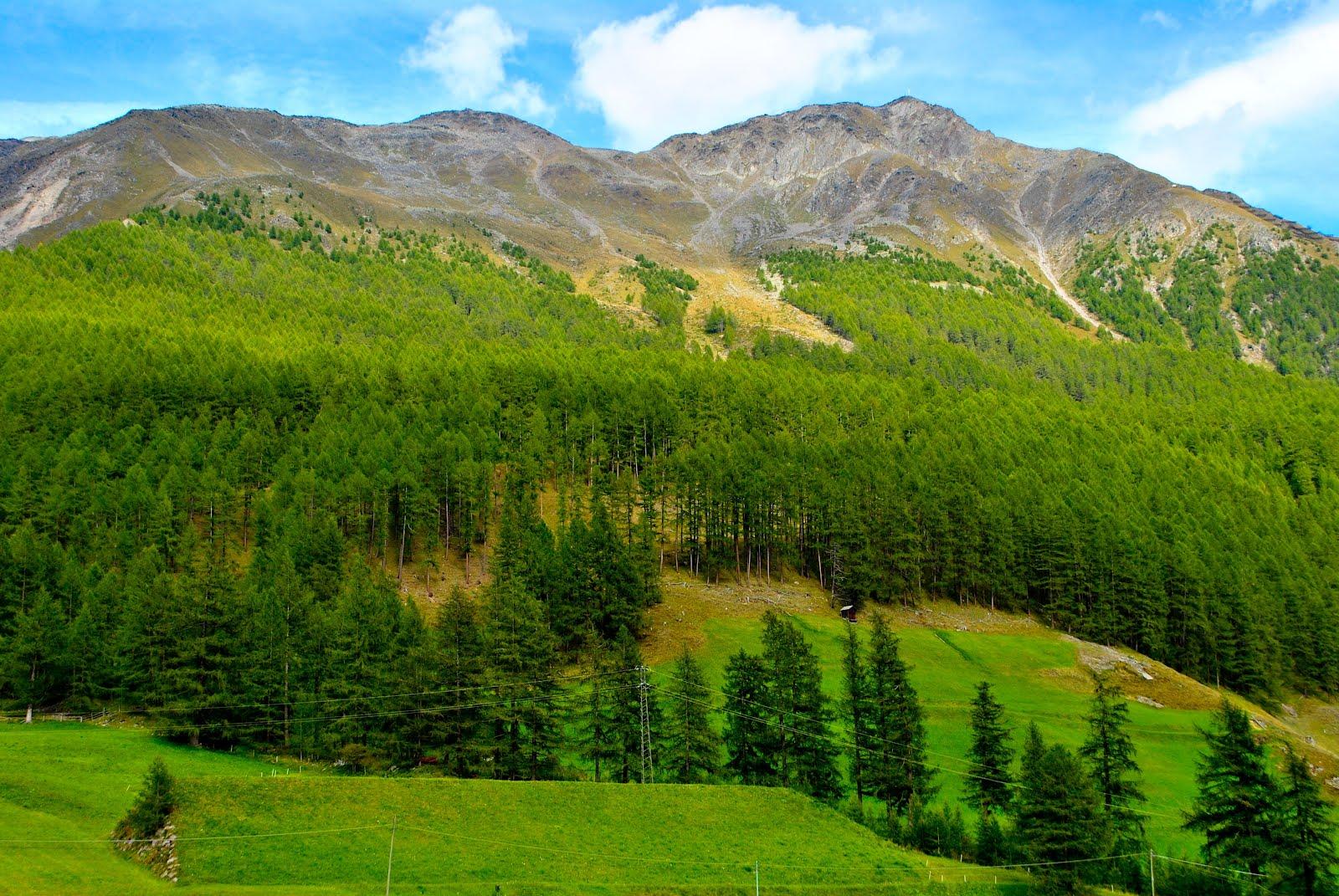 http://2.bp.blogspot.com/-nrX2ZfZANxc/T86GQTn0hUI/AAAAAAAA6iM/RkQbqGsiBNU/s1600/vista-de-las-monta%25C3%25B1as-dolomitas-dolomites-mountains-pinos-paisaje-.jpg