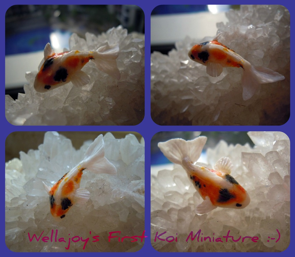 Wellajoy 39 s miniature koi fish with videos for Koi tank size