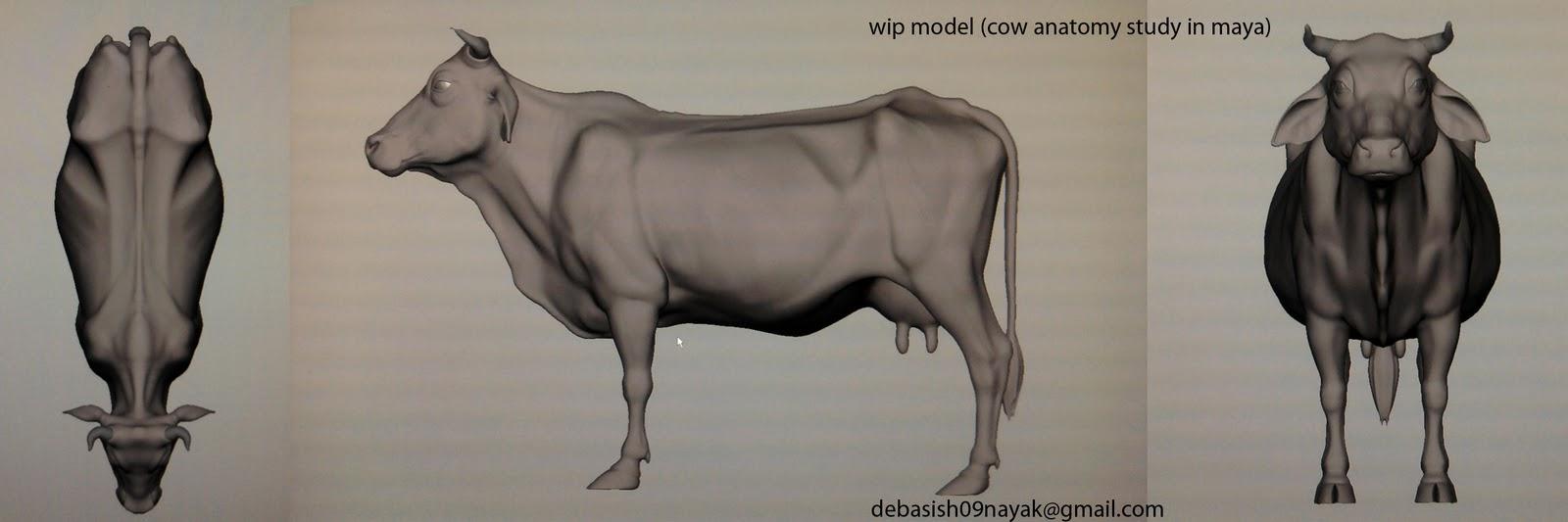 Debasis 3d Models