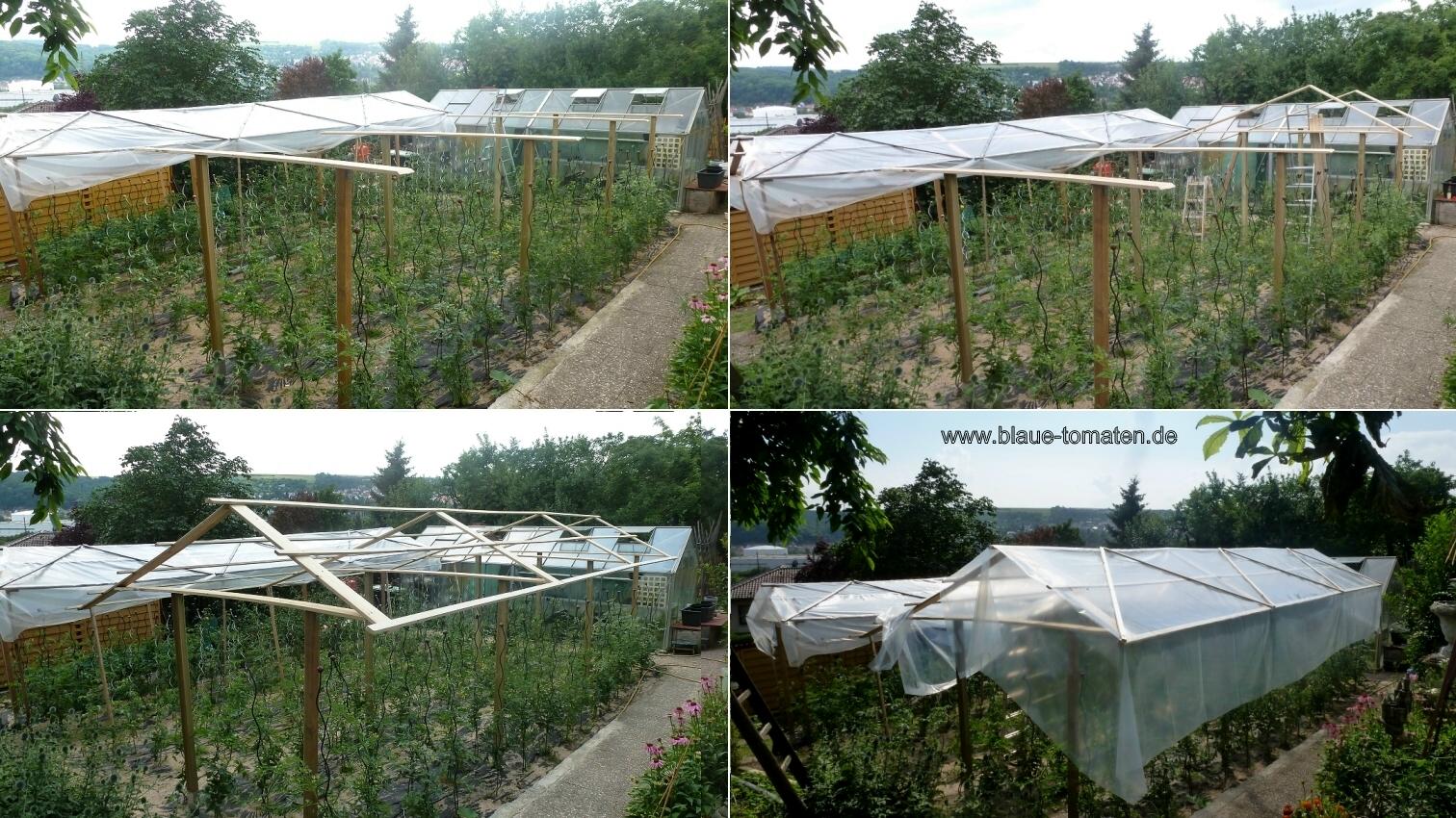 kleiner gem sek nig tomatendach tomatenhaus bauen. Black Bedroom Furniture Sets. Home Design Ideas
