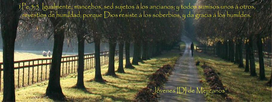 Blog-IDI-Jovenes-El Salvador