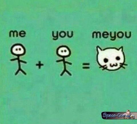 funny comics cat image
