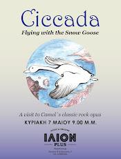 CICCADA
