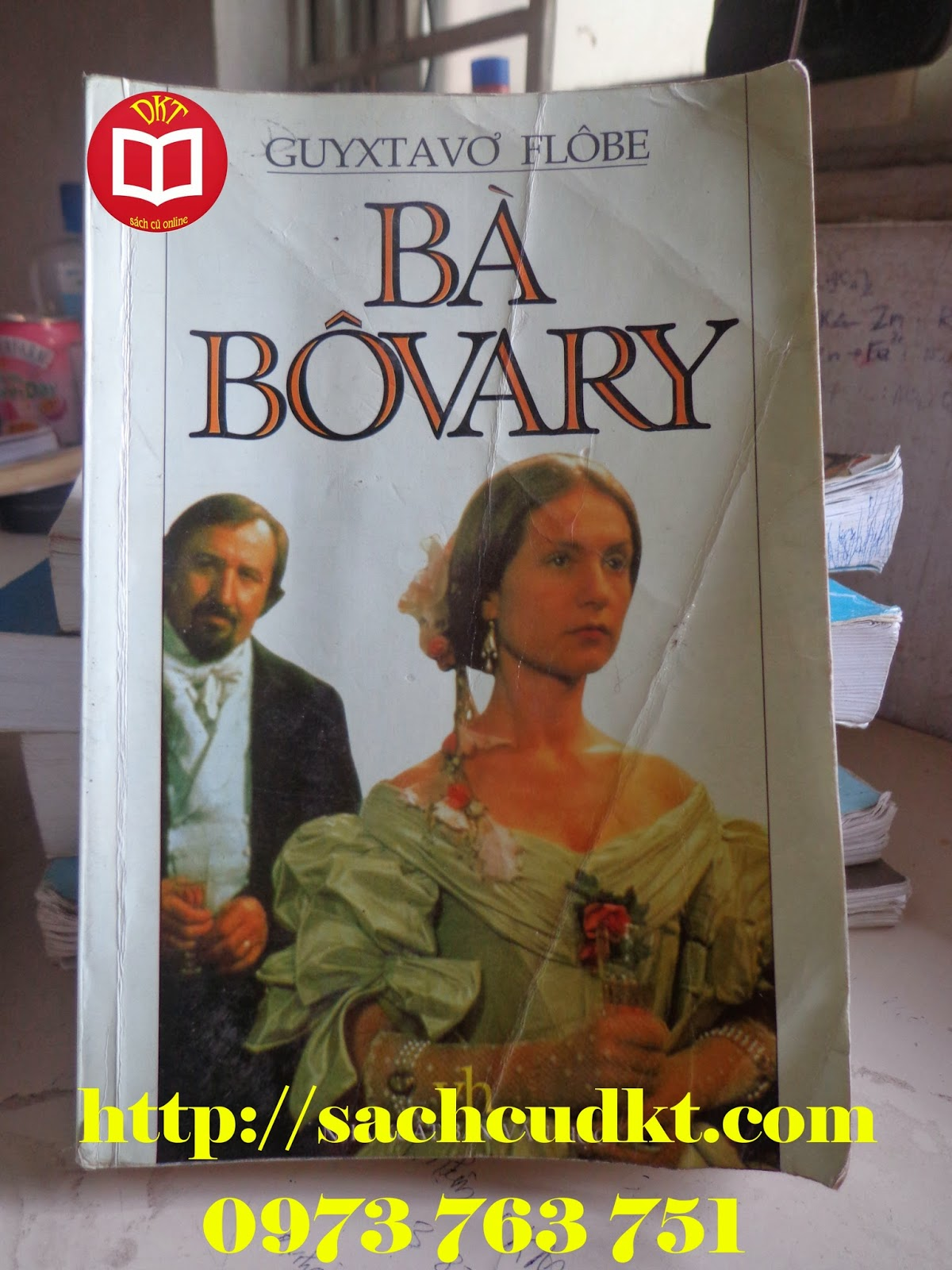 Cuốn sách Bà Boovary | Sách cũ DKT