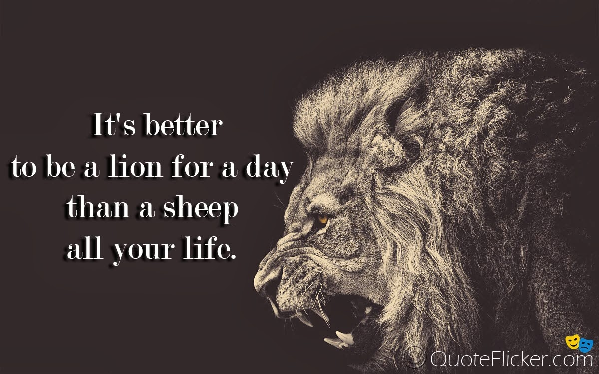 Lion Quotes Inspirational Lion for a day.