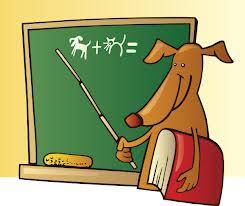 Dog Teaching