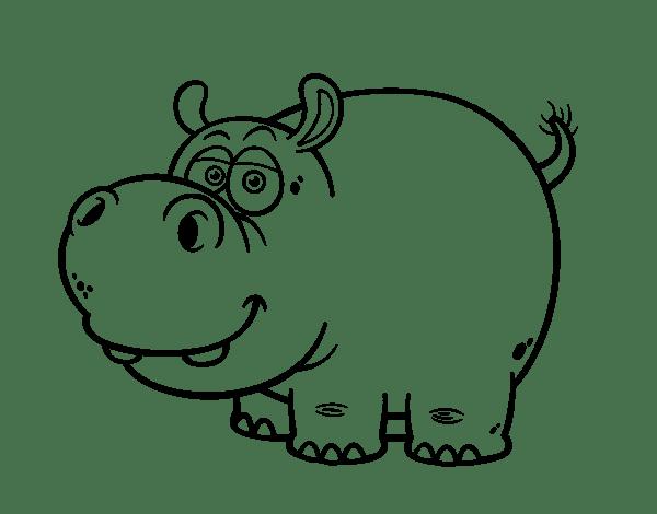 Desenho de Hipopótamo para Colorir Desenhos de  - imagens para colorir de hipopotamo