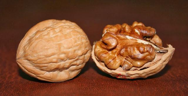 walnuts-235346