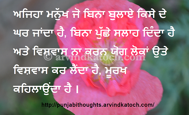 Punjabi Thought, Quote, invitation, advice, reliable, fools,