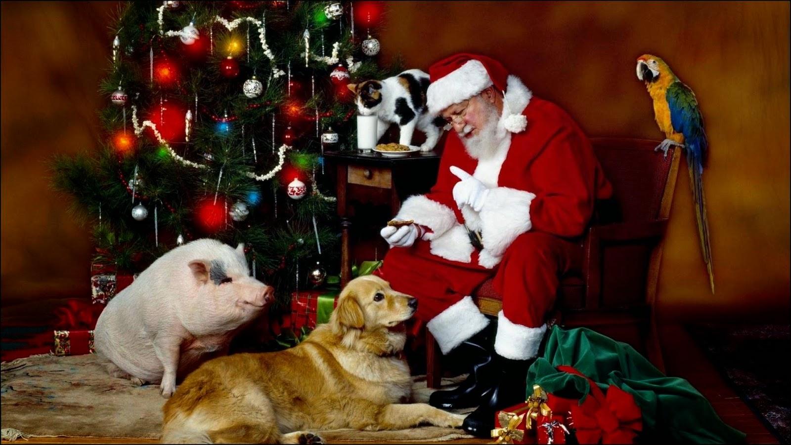Papá Noel con animales junto al árbol navideño
