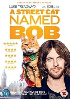 Filme Um Gato de Rua Chamado Bob - Legendado 2017 Torrent