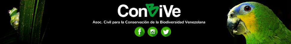 ConBiVe
