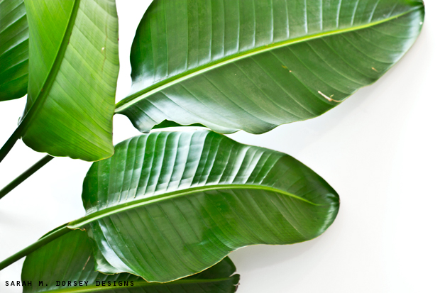how to make paper out of banana leaves