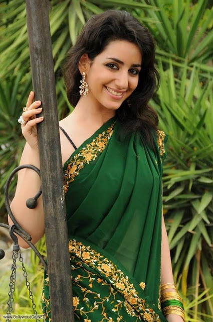 Actress+Kriya+Latest+Hot+Spicy+Stills+in+Green+Saree+(2)