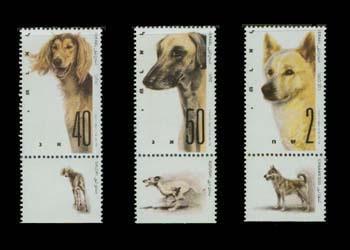 □1987年イスラエル国 サルーキ スルーギ カナーン・ドッグの切手