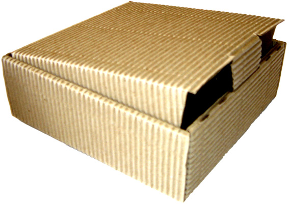 cajas de carton essay