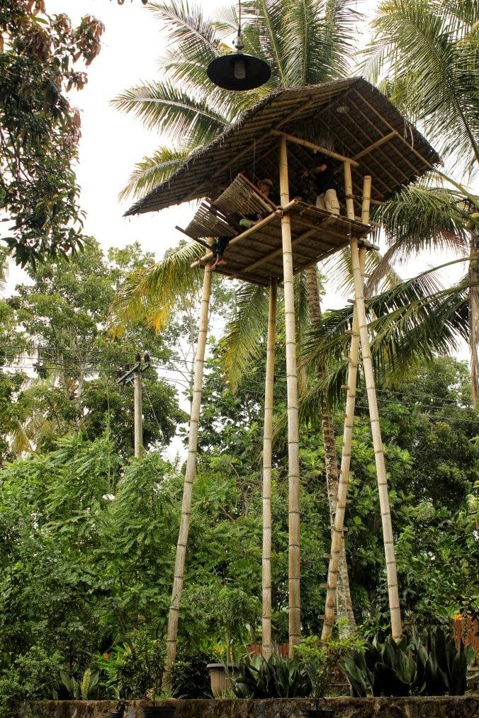 Paglak di Desa Kemiren, Kecamatan Glagah, Banyuwangi.