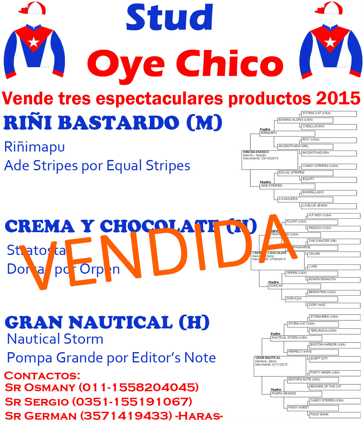 OYE CHICO PRODUCTOS