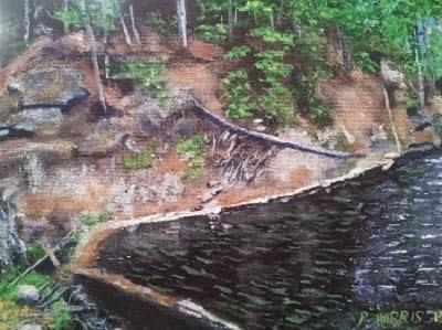 Beaver Swamp Algonquin