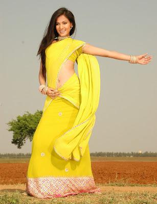 Actress Sonal Chauhan in Half Saree photos