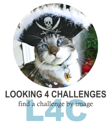 Looking For Challenges?