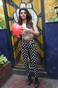 Hindi Actress Sherlyn Chopra photos-thumbnail-14