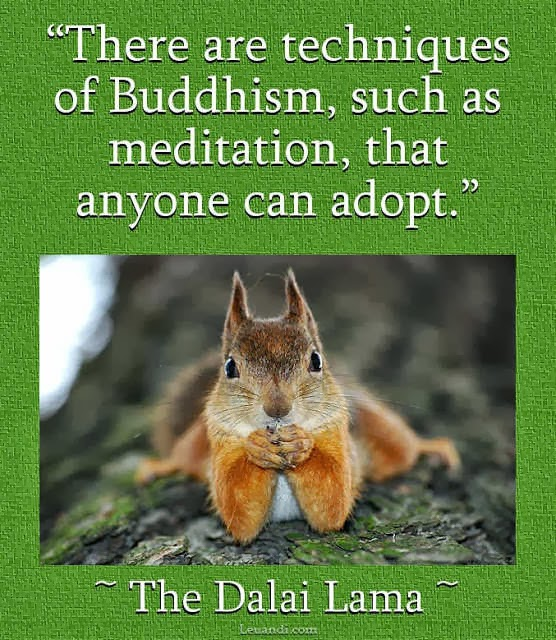 spirituality, science, Dalai Lama, Buddhism, Buddha, yoga, christian, Jesus