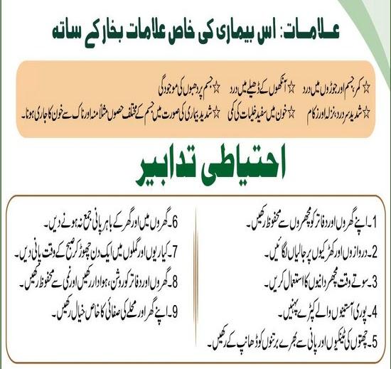 Dengue virus pakistan essay