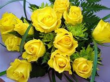 Flores de mi PRIMA LOLI.