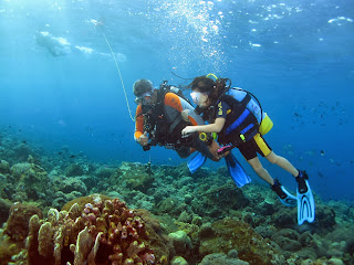 Diving in Tulamben, diving in Amed, diving in Nusa Penida, adventure in Bali