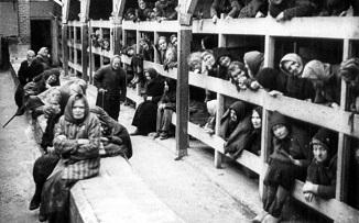 """✡ Întrebare:""""Ce puteți spune despre Holocaust? Pentru ce a fost pedepsit poporul evreu?"""""""