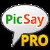 PicSay Pro Photo Editor APK 1.6.10 (v1.6.10)