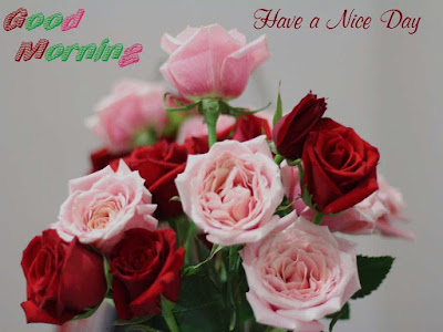 Good-Morning-Hot-Wishes-Cards-pic