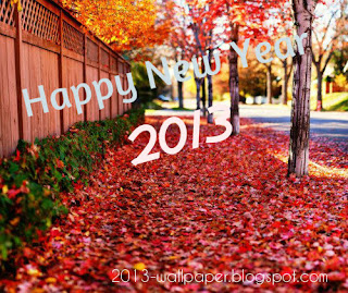 Beautiful-happy-new-year-2013-nature-wallpaper