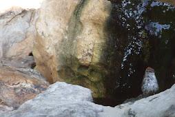 Bubbling Boulder