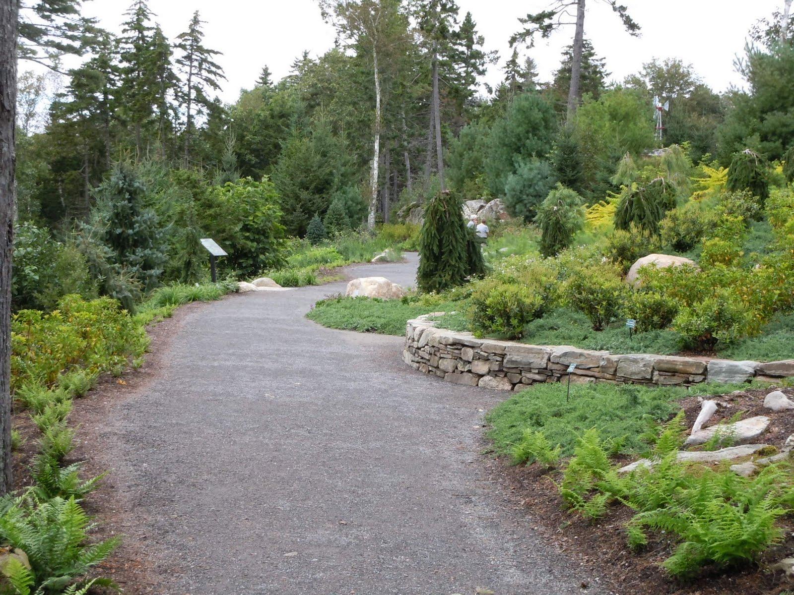Flowers From My Area Coastal Maine Botanical Gardens 1