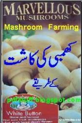 Online pdf books: Khumbi Ki Kasht Pdf Book Download