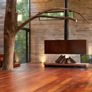 Nature Interior Design Photos for Minimalist House