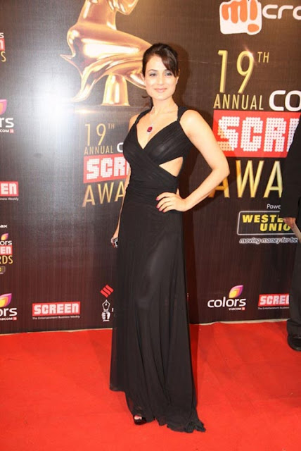 Amisha Patel at screen awards