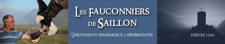 Les fauconniers de Saillon