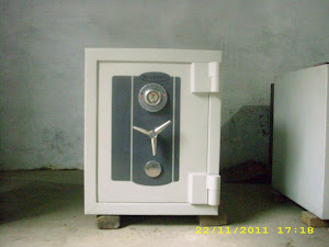 New Cartenz Safe
