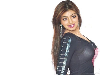 Ayesha Takia Bollywood Bollywood Girl Wallpaper