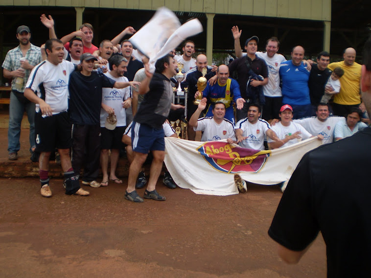 """Abogados """"D"""" Campeon 2012"""