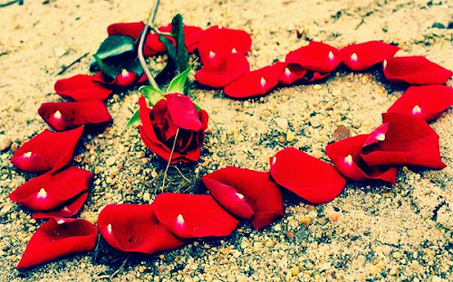 Love Heart of red roses on the ground | Heart Image