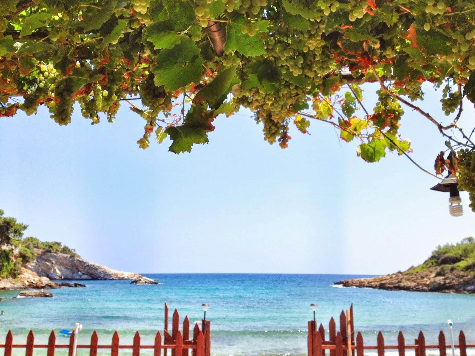 THASSOS Adası Agustos'13